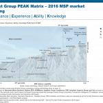 MSP PEAK Matrix 2016