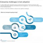 Entrprs Bots Adptn-challenges