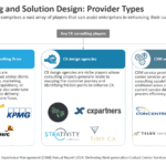 CX Consulting and Solution Design - Provider Types